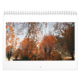Nature changing with the seasons calendar
