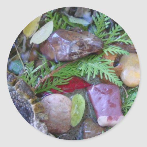Nature collage of found objects round stickers | Zazzle