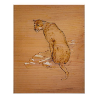 Nature Collection - Cougar Poster