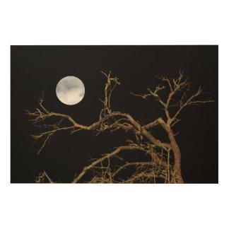 Nature Dark Scene Wood Wall Art