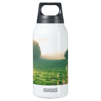 Nature Dawn Of Summer SIGG Thermo 0.3L Insulated Bottle