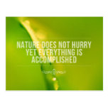 Nature Does Not Hurry | Inspirational Quote Postcard