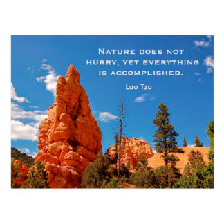 Nature does not hurry - postcard