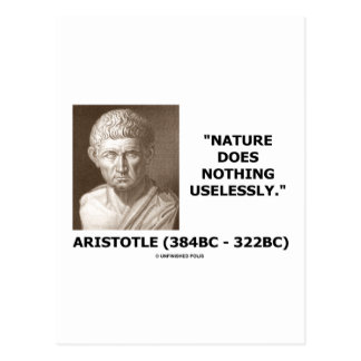 Nature Does Nothing Uselessly (Aristotelian Quote) Post Card