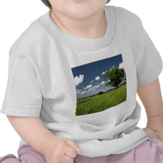 Nature Field Summer Countryside Tshirt