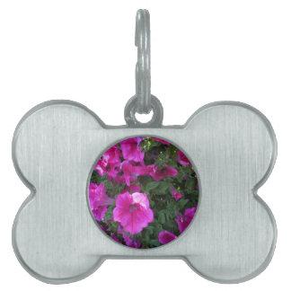 Nature, Flora, Pink Flower Pet Tag