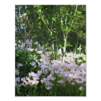 Nature Flower Green Tree NewJersey USA Poster GIFT