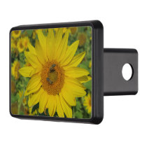 nature, flower, summer, sunflower, blossom, floral hitch cover