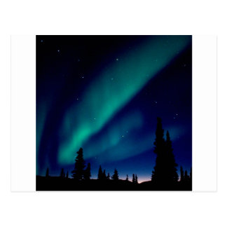 Nature Forces Aurora Borealis Alaska Postcard