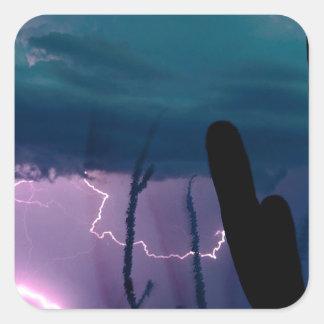 Nature Forces Desert Storm Sticker