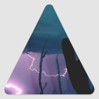 Nature Forces Desert Storm Triangle Sticker
