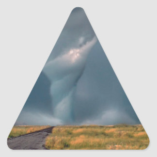 Nature Forces The Road To Destruction Triangle Sticker