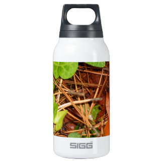 Nature Forest Floor English Ivy Rainy Leaves 10 Oz Insulated SIGG Thermos Water Bottle