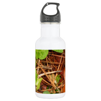 Nature Forest Floor English Ivy Rainy Leaves 18oz Water Bottle