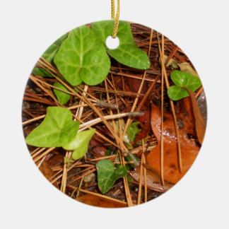 Nature Forest Floor English Ivy Rainy Leaves Ceramic Ornament
