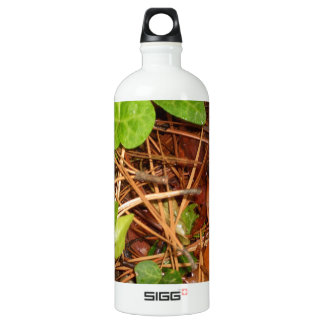 Nature Forest Floor English Ivy Rainy Leaves SIGG Traveler 1.0L Water Bottle