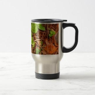 Nature Forest Floor English Ivy Rainy Leaves Travel Mug