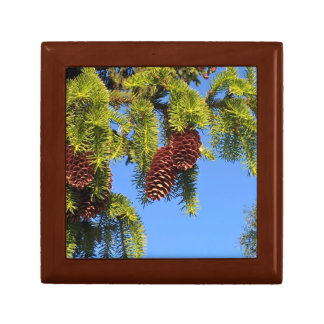 Nature forest photo box with branches