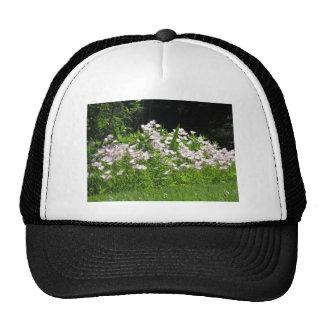 Nature Garden NewJersey America Gifts FUN NVN670 Hat