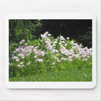 Nature Garden NewJersey America Gifts FUN NVN670 Mouse Pad