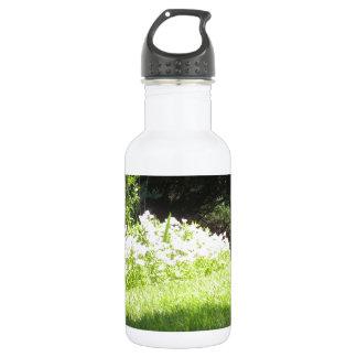 Nature Garden NewJersey America NVN669 FUN Stainless Steel Water Bottle