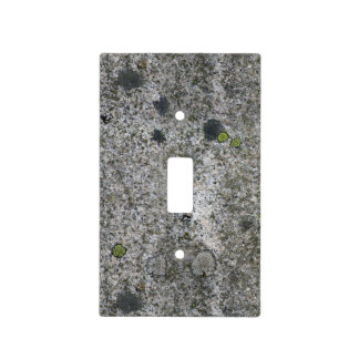 Nature Geology Gray Rock Texture with Moss Light Switch Cover
