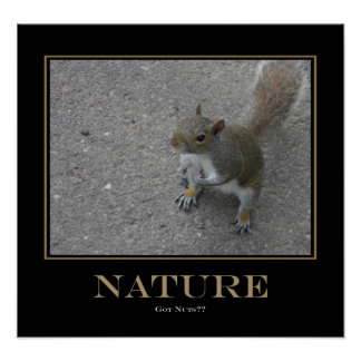 Nature - Got Nuts? Poster