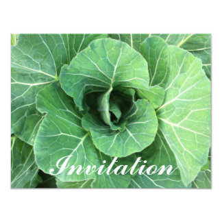 Nature Green cabbage Card