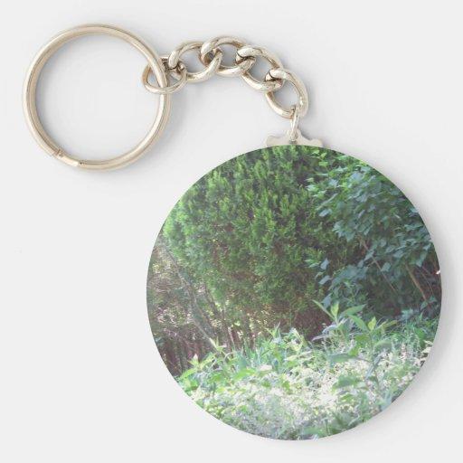 Nature Green Garden Wild NVN672 gifts environment Key Chain