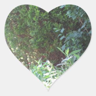 Nature Green Garden Wild NVN672 gifts environment Stickers