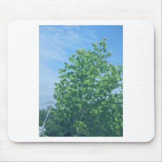 Nature Green Tree Environment Cause NVN674 GIFTS F Mousepads
