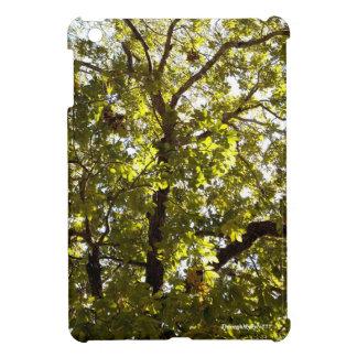 Nature Green Tree iPad Mini Cover