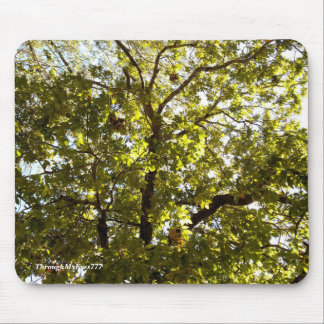 Nature Green Tree Mouse Pad