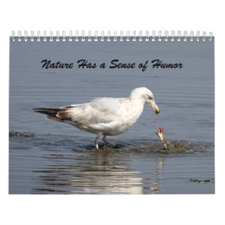 Nature Has a Sense of Humor Calendar
