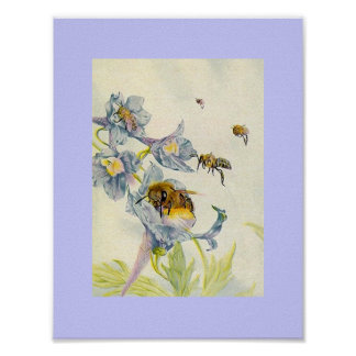 Nature Honey Bees and Morning Glory Flowers Lilac Poster