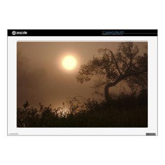 "Nature Images 17"" Laptop Skins"