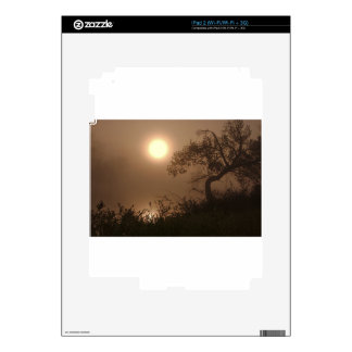 Nature Images iPad 2 Decal