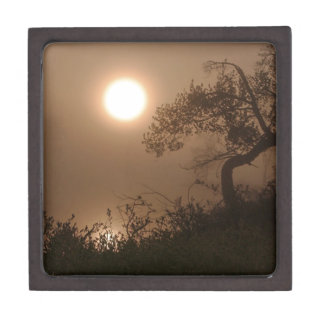 Nature Images Premium Jewelry Boxes