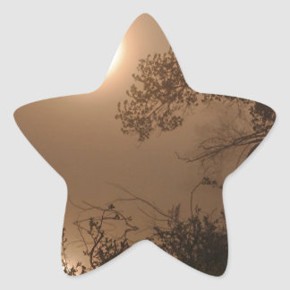 Nature Images Star Sticker