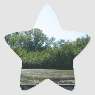 Nature In Harmony Star Sticker