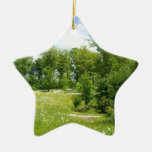 Nature in Spring Christmas Ornaments