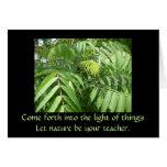 Nature Inspirational card
