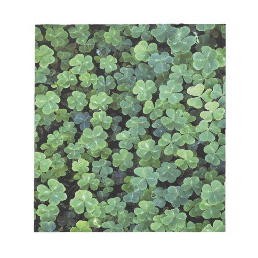 Nature Ireland Leaf Clover Memo Notepad