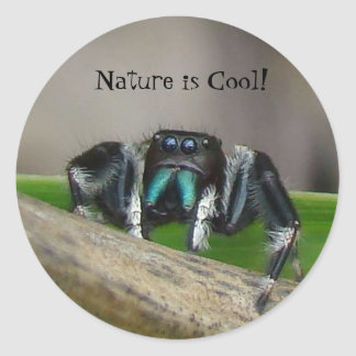 Nature is Cool Round Sticker
