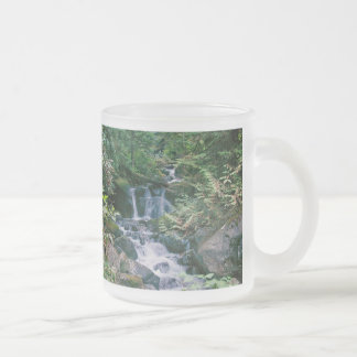 Nature is man's teacher... frosted glass coffee mug