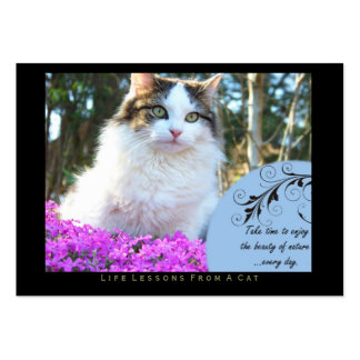Nature Life Lessons from a Cat ACEO Art Cards Business Card