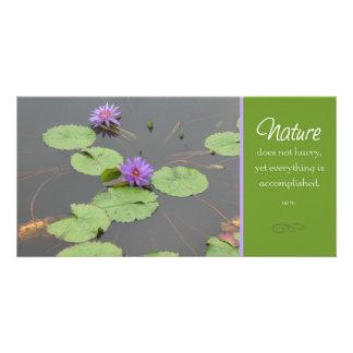 Nature Lilly Pod Photocard Card