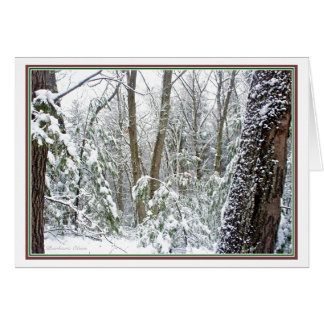 ***Nature: Live each Season: Walden Pond Card