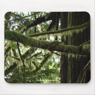 Nature Lover Forest Photo Mousepad
