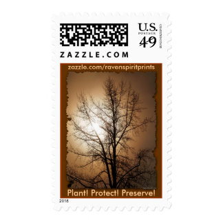 NATURE LOVER POSTAGE STAMPS